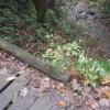 琵琶滝を抜けて頂上を目指す