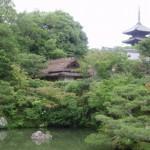仁和寺を観光