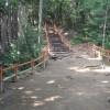 稲葉山ルートの途中から頂上まで