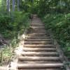 稲葉山コース最大の難所、急な階段