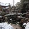 芦原の宿 八木の朝、雪景色が魅力的