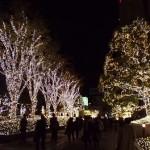 新宿駅に帰還、クリスマスイルミネーション