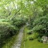 嵐山 京都 一人旅
