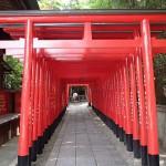 猿田彦神社、銭洗稲荷神社、犬山神社