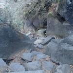 筑波山 白雲橋コースから下山