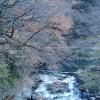 塔之沢温泉から箱根湯本駅へ