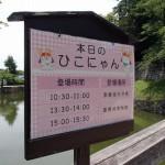 彦根城 ひこにゃんの時間