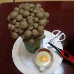 裾花峡天然温泉館 うるおい館の夕食