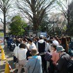 新宿御苑、桜の花見シーズンの入場制限