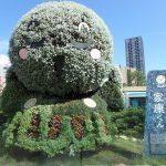 浜松駅前から浜松城へバスでの行き方
