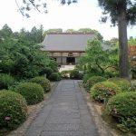 龍潭寺の日本庭園、抹茶、井伊家の墓