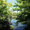 好古園、姫路城脇の庭園