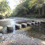 ドレミファ橋、飯能河原を経由して飯能駅へ