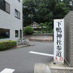 京都駅から下鴨神社、上賀茂神社へ向かうバス