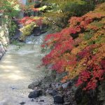 鹿教湯温泉の散策と上田駅まで帰るバス