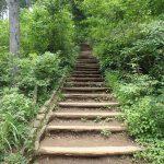 高尾山 稲荷山ルートを登る