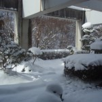 鷹泉閣 岩松旅館の朝からチェックアウト、最寄り駅まで